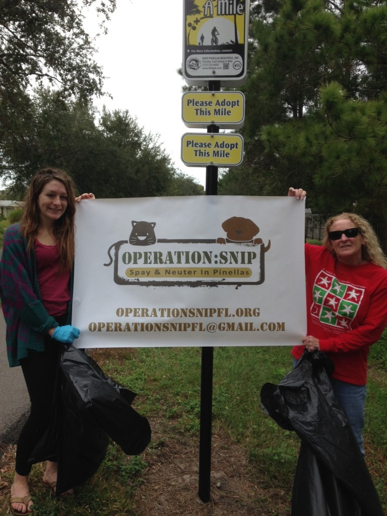 Pinellas County trail clean up